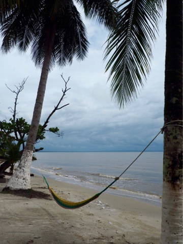 Palm trees and hammocks on Playa Blanca, Guatemala