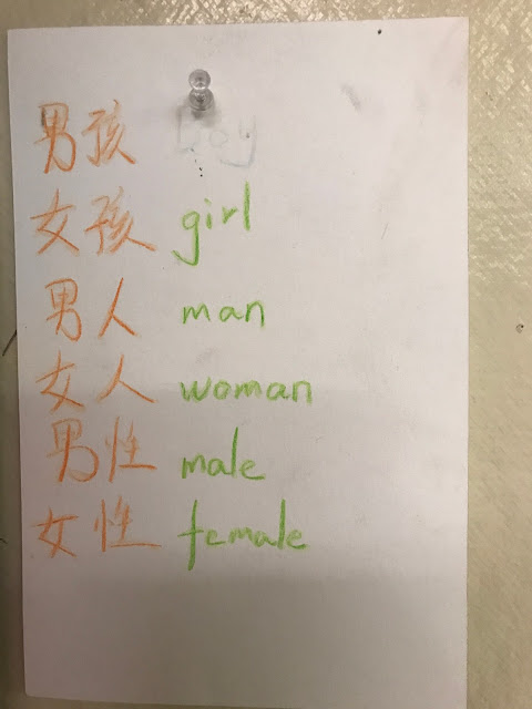 Mandarin-to-English Word Wall for Gendered Nouns for Female