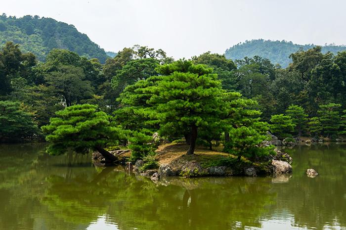 KyotoGolden04.jpg