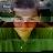 Cory Capps avatar image