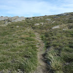 Mt Stilwell summit Track (270836)