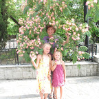 Мозирон и Крымская Ноосфериана 19-24.06.2012 - 315403_256649654444602_323469162_n.jpg