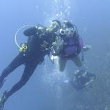 Bonaire 2011 - PICT0158.JPG