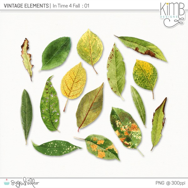 kb-VE_Time4Fall_6
