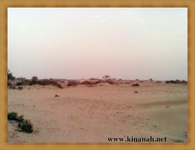 مواطن قبيلة الشقفة (الشقيفي الكناني) الماضي t8197-32.jpeg