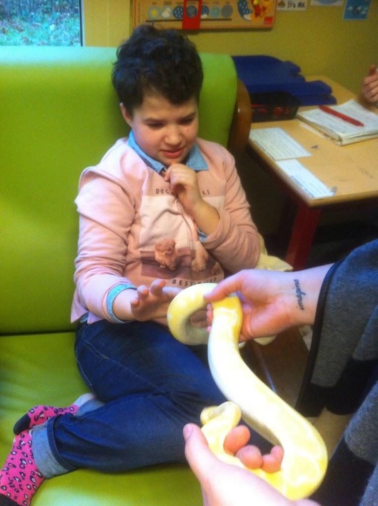 Slangen op bezoek bij de Kikkers - IMG_9230.JPG