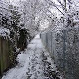 Зима 10 февраля 2012
