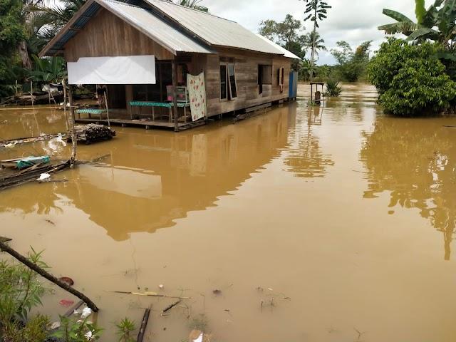 Hujan Turun Sebabkan Sejumlah Desa di Kusan Tengah Terendam Air
