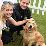 OIC - ENTSIMAGES.COM - Rachel Riley and Pasha Kovalev at the  PupAid Puppy Farm Awareness Day 2015 London 5th September 2015 Photo Mobis Photos/OIC 0203 174 1069