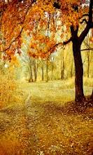 Golden_Forest.jpg