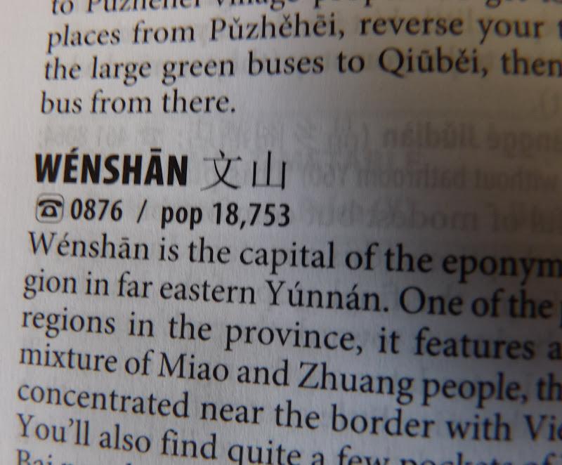 Chine.Yunnan Wen shan et BA MEI 1 - P1260787.JPG