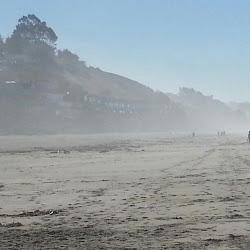 Manresa State Beach's profile photo