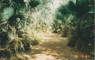 1450Mataranka Springs