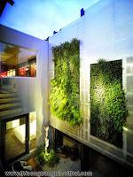 """Mang thiên nhiên vào nhà phố với """"khu vườn thẳng đứng"""""""