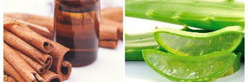 Natural Hemorrhoid Herbal Remedies You Can Try at Home