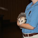 Zoo Snooze 2015 - IMG_7147.JPG