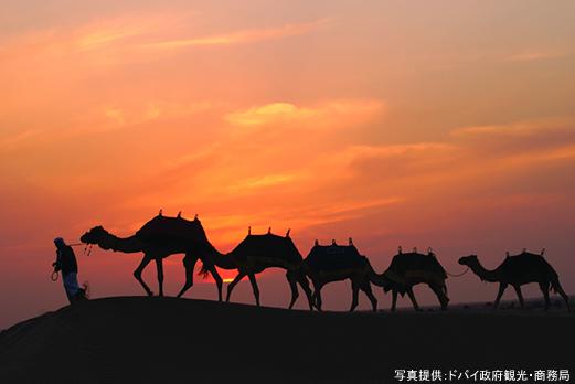 砂漠(ドバイ)/イメージ