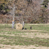 Tower Hunt, November 2014 - IMG_5004.JPG