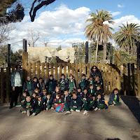 P4. Visitem el Zoo