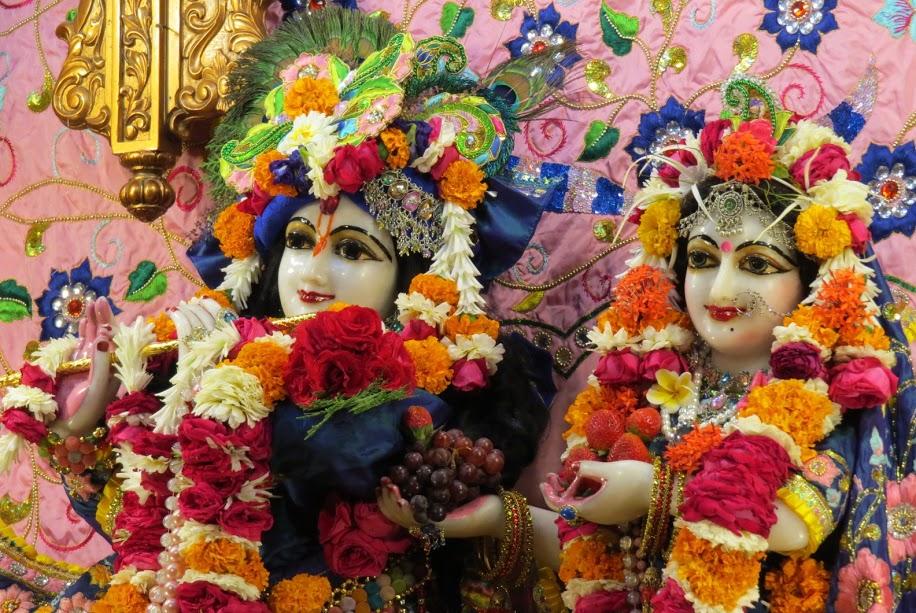 ISKCON Vallabh vidhyanagar Deity Darshan 17 jan 2017 (10)