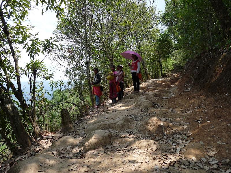Chine: randonnée xishangbanna, région de Bada - Picture1%2B1033.jpg