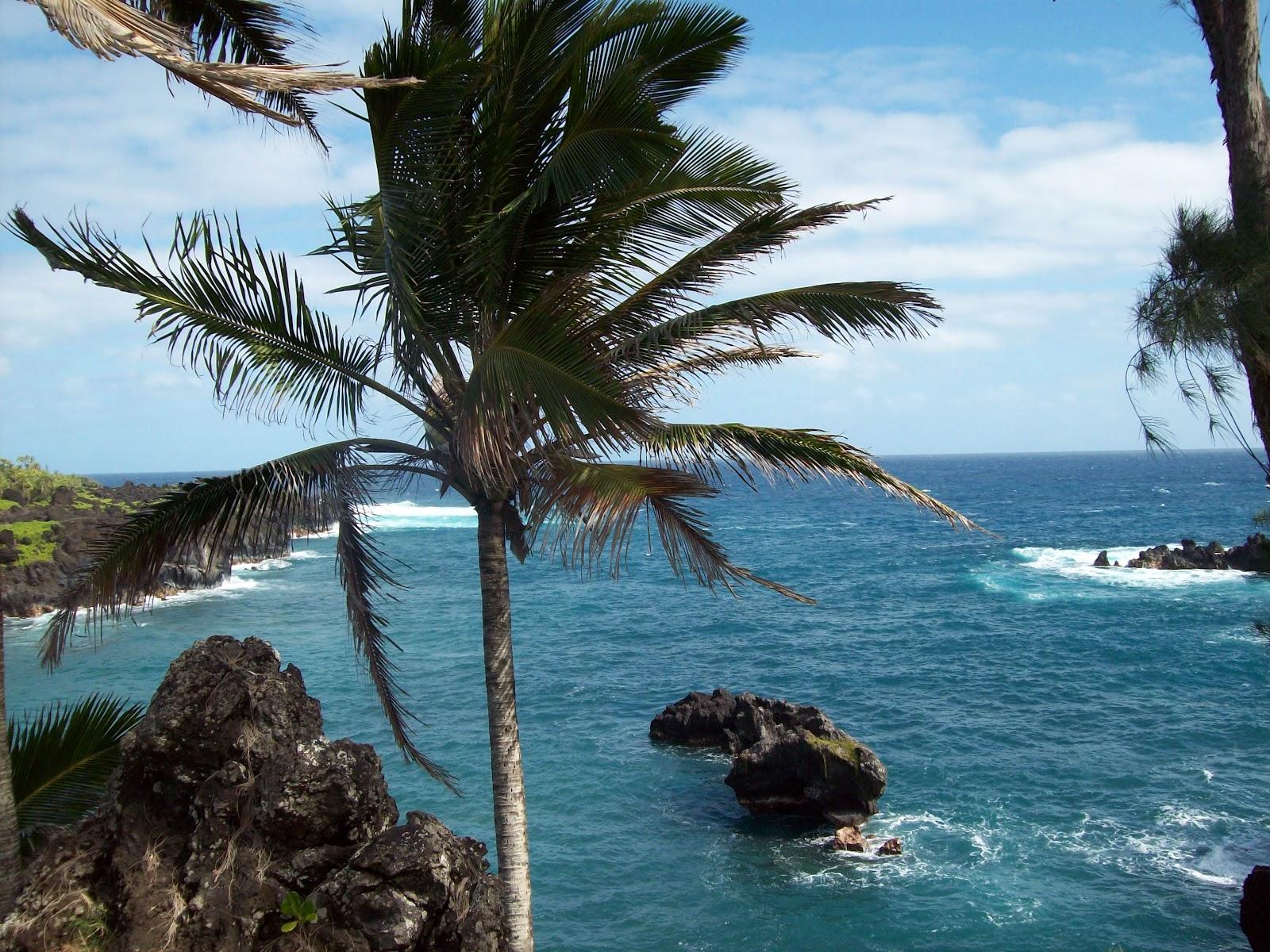 Hawaii Day 5 - 114_1559.JPG