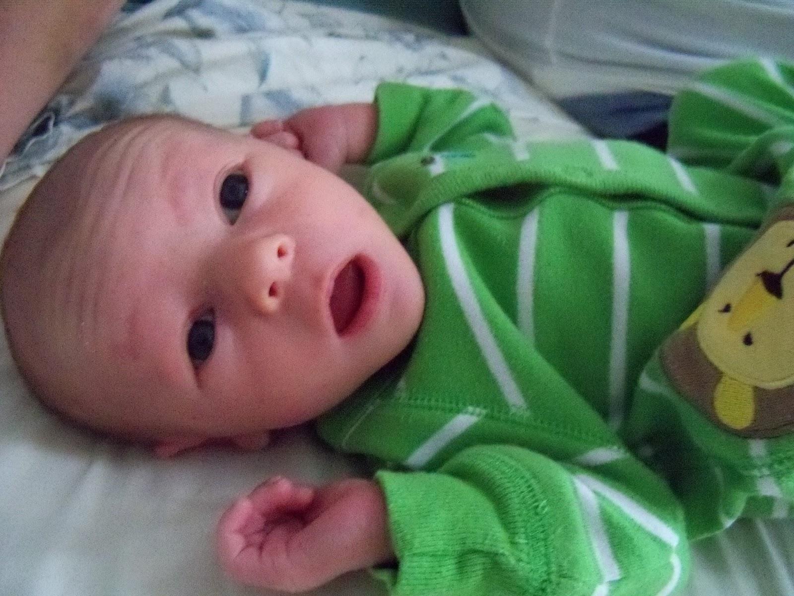 Meet Marshall! - 115_2564.JPG