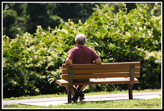 """Photo: A to Z 2011-08-22 Week 1 - Day 2 Monday's """"A"""" """"All Alone"""""""