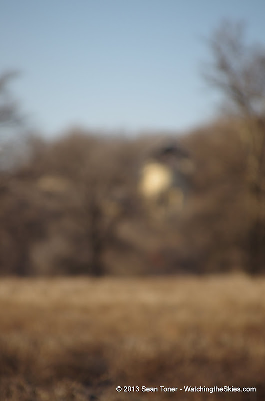 01-05-13 Arbor Hills Nature Preserve - IMGP3959.JPG