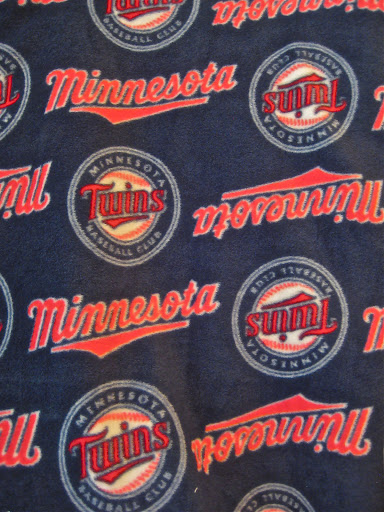 Minnesota Twins Cloth Diaper