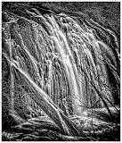 """Beaver Falls"" by Tim O'Neill - Special"