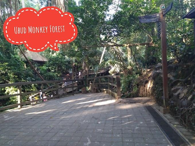 Ubud Monkey Forest, habitat asli monyet di daerah Gianyar