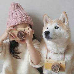 Cute-Dog-05 (2)