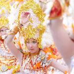 CarnavaldeNavalmoral2015_239.jpg