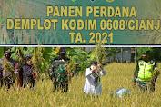 Wujudkan Program Ketahanan Pangan, Dandim 0608/Cianjur Panen Raya Demplot Padi di Cugenang