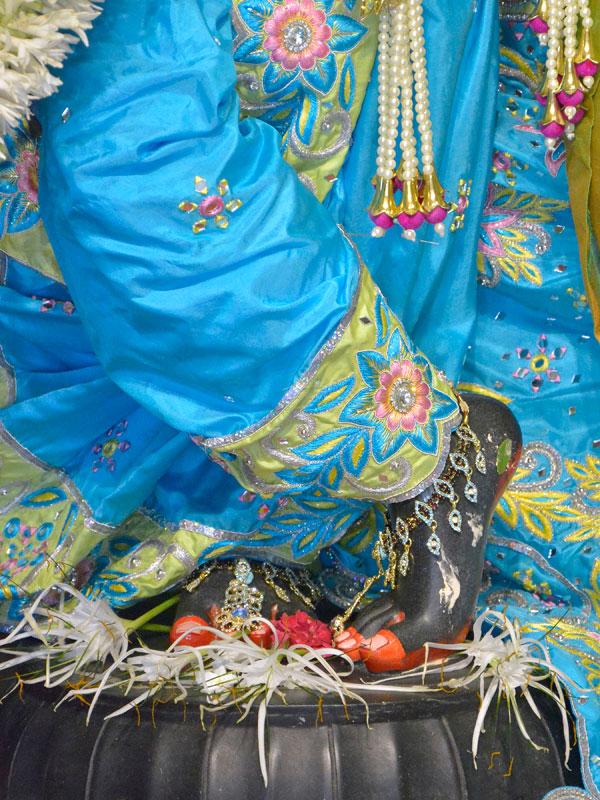 ISKCON Ahmedabad  Deity Darshan 14 June 2016 (6)