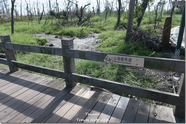 台東山海鐵馬道 台東環市自行車道 (50)