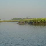 A tidal creek.