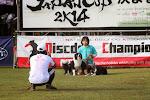 JAPANCUP2K14 2日目