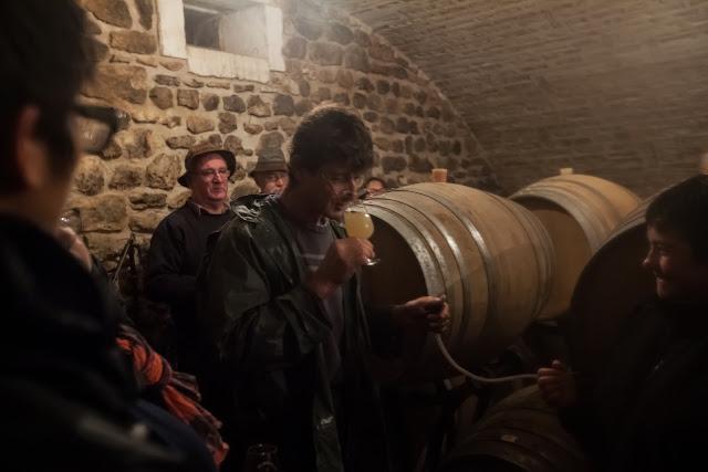 ...et dégustation des chardonnay 2013 en cours de vinification plus ou moins avancée.