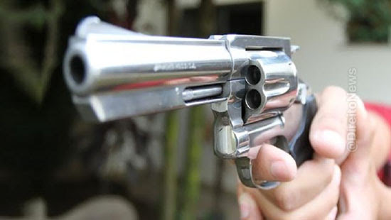 proibicao armas agressores mulheres criancas idosos