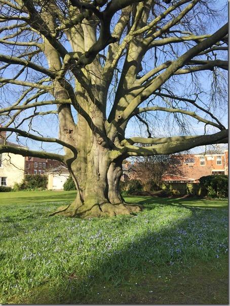 Tewkesbury Abbey (76)