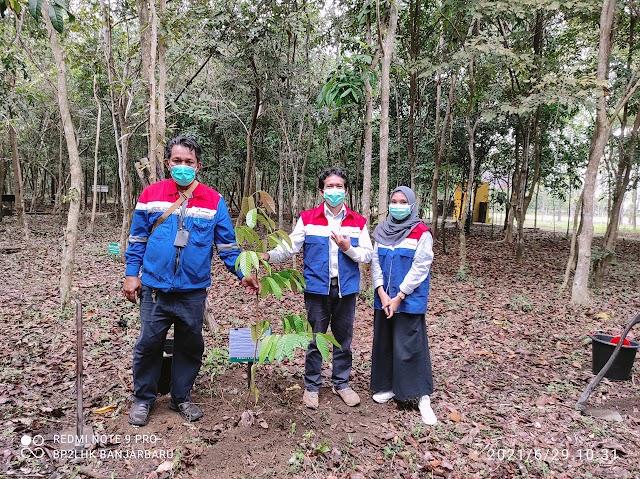 Pertamina DPPU Syamsudin Noor Dukung Budidaya Tanaman Endemik Kalimantan