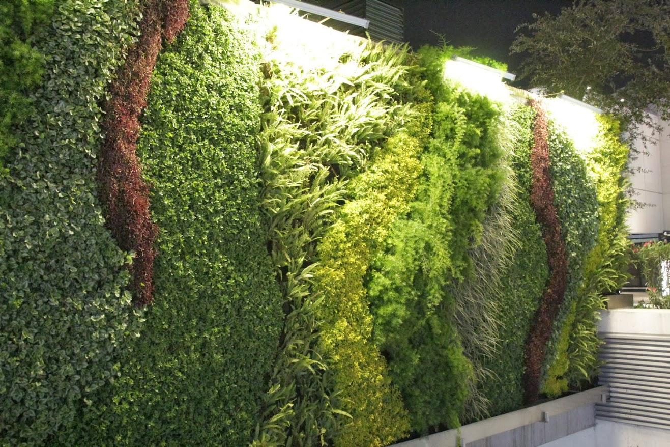 Cursos de jardines verticales en m xico guadalajara for Reja para jardin vertical