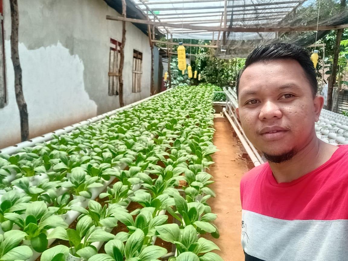 Herman Petani Millenial, Pasarkan Sayuran Hidroponik Via Online