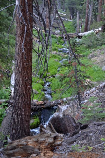 Redrock Creek