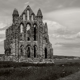Whitby Abbey by Andrew Lancaster - Buildings & Architecture Places of Worship ( abbey, beautiful, classic, white, beauty, church, black, building, landscape, stone, religion )
