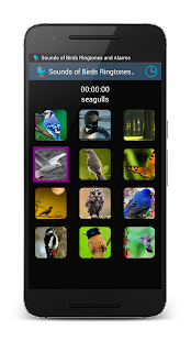 Sounds of Birds Ringtones- screenshot thumbnail