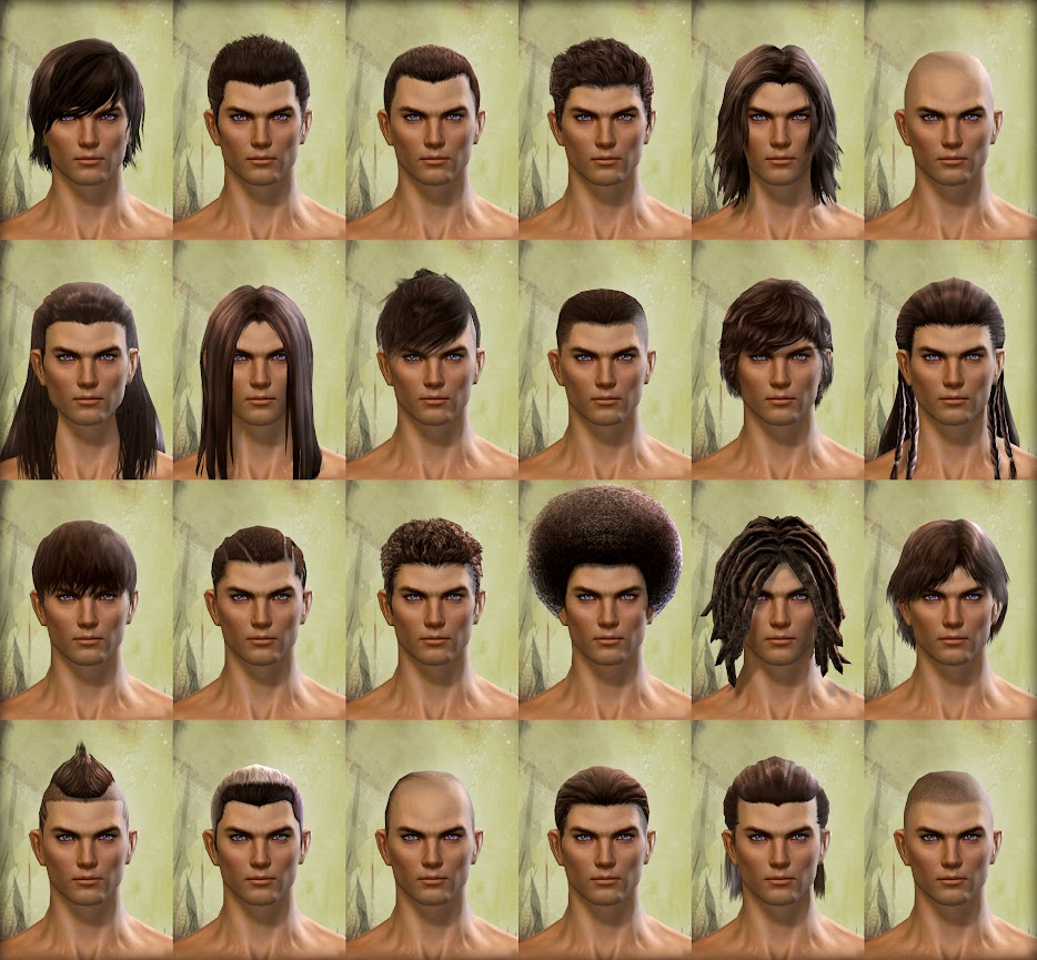 Guild Wars 2 Human Male Hair