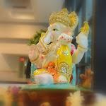A2MM Makar Sankrant 31Jan 2015(41).JPG